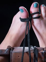 Infernal Restraints  InfernalRestraints Olivia F..